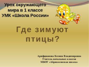 Урок окружающего мира в 1 классе УМК «Школа России» Где зимуют птицы? Арифджа