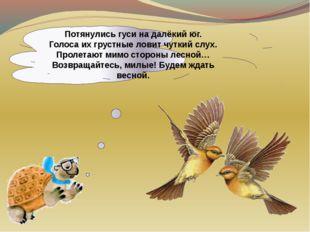 Потянулись гуси на далёкий юг. Голоса их грустные ловит чуткий слух. Пролетаю