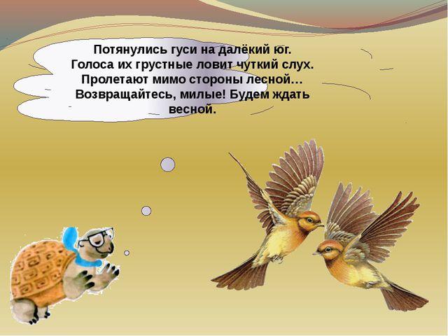 Потянулись гуси на далёкий юг. Голоса их грустные ловит чуткий слух. Пролетаю...