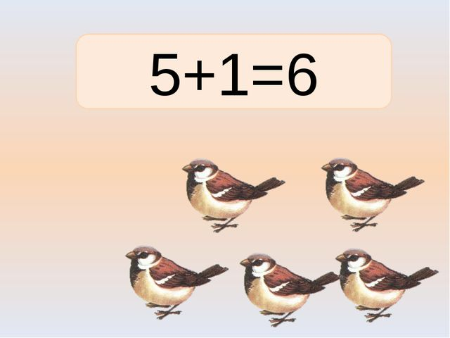 5+1=6