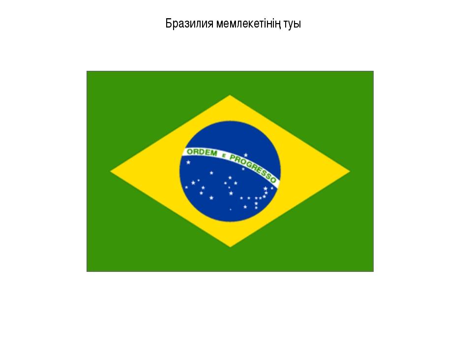 Бразилия мемлекетінің туы