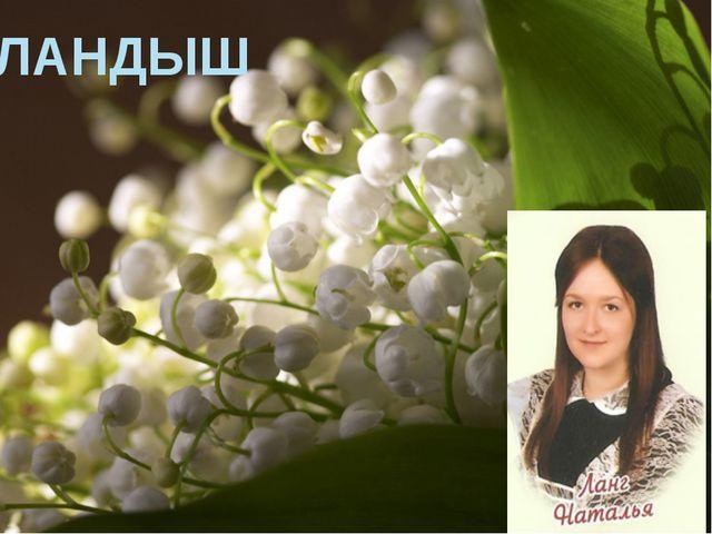Ландыш ЛАНДЫШ