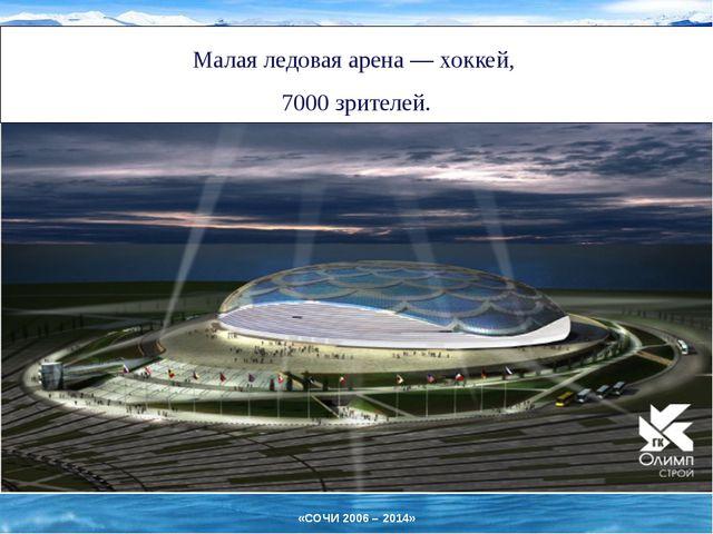 Малая ледовая арена— хоккей, 7000 зрителей. «СОЧИ 2006 – 2014»