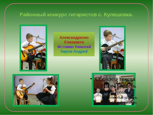 Районный конкурс гитаристов с. Кулешовка. Александренко Елизавета Истомин Ник...