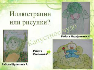 Капустное чудо Иллюстрации или рисунки? Работа Шульпина А. Работа Степанов С.
