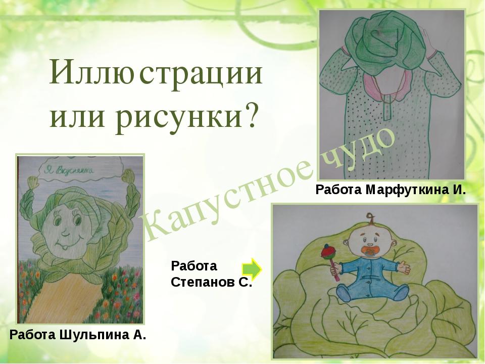 Капустное чудо Иллюстрации или рисунки? Работа Шульпина А. Работа Степанов С....