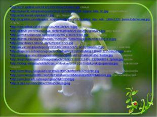 http://s017.radikal.ru/i434/1202/65/76eac543a9a7.jpg семья http://trvlworld.n