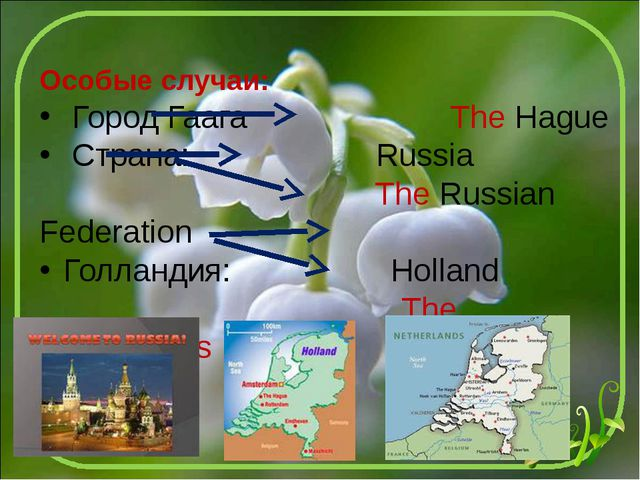 Особые случаи: Город Гаага The Hague Страна: Russia The Russian Federation Го...