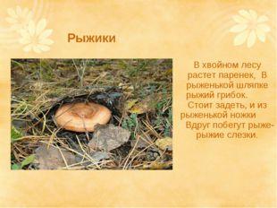 Рыжики В хвойном лесу растет паренек, В рыженькой шляпке рыжий грибок. Стоит