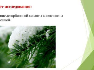 Предмет исследования: содержание аскорбиновой кислоты в хвое сосны обыкновенн