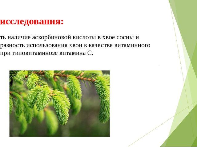 Цель исследования: установить наличие аскорбиновой кислоты в хвое сосны и цел...