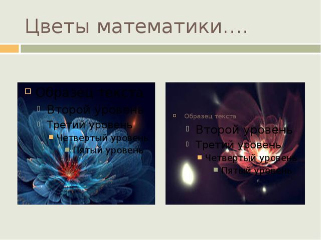 Цветы математики….