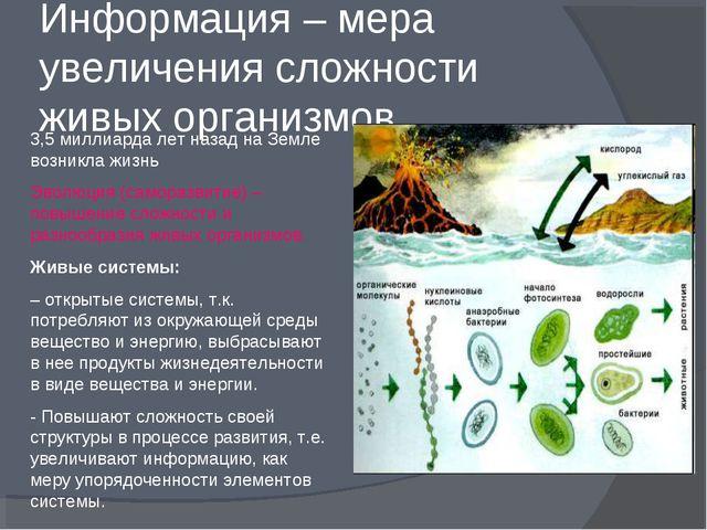 Информация – мера увеличения сложности живых организмов 3,5 миллиарда лет наз...