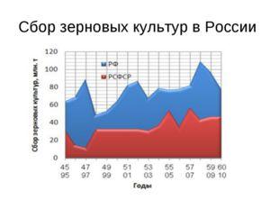 Сбор зерновых культур в России