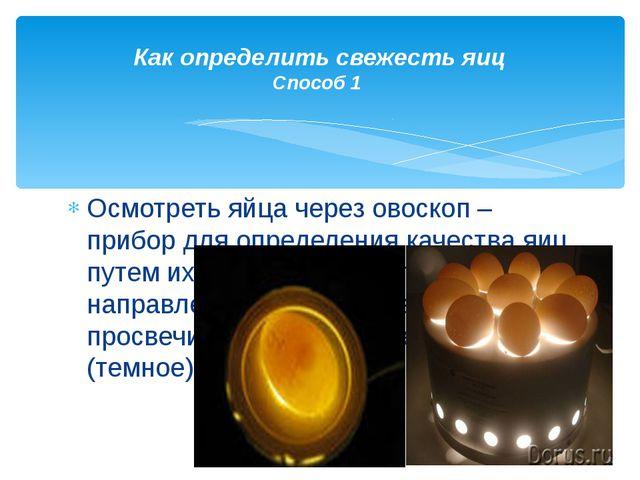 Осмотреть яйца через овоскоп – прибор для определения качества яиц путем их п...