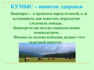 КУМЫС – напиток здоровья Башкиры – в прошлом народ кочевой, а за кочевником,