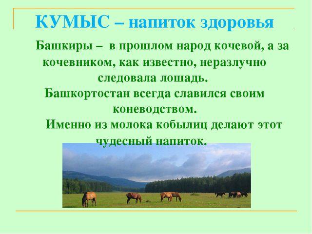 КУМЫС – напиток здоровья Башкиры – в прошлом народ кочевой, а за кочевником,...