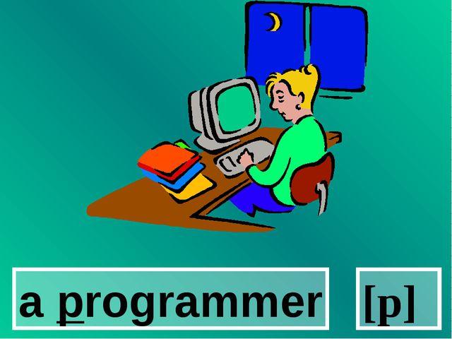 a programmer [p]