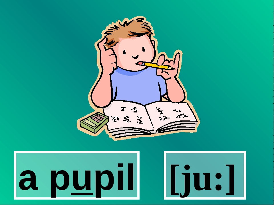 a pupil [ju:]