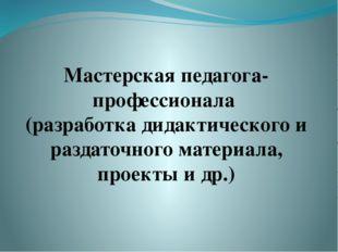 Мастерская педагога-профессионала (разработка дидактического и раздаточного м