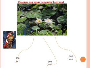 Сколько лет жила черепаха Тортила? 300 лет 100 лет 200 лет