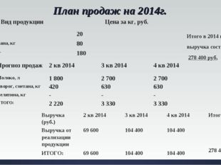 План продаж на 2014г. Итого в 2014 году выручка составит 278 400 руб. Вид про