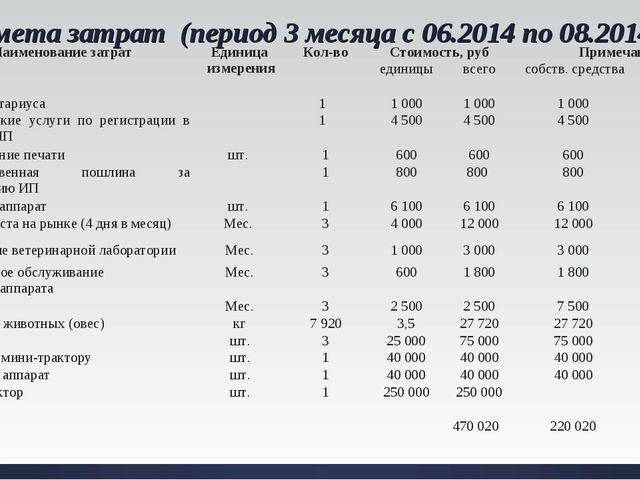 Смета затрат (период 3 месяца с 06.2014 по 08.2014). №Наименование затрат...