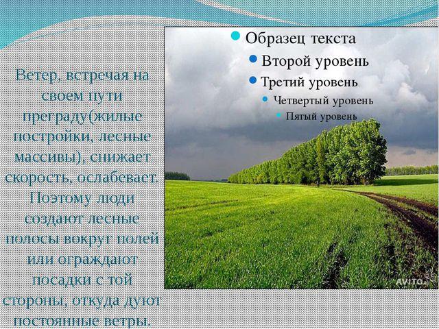 Ветер, встречая на своем пути преграду(жилые постройки, лесные массивы), сни...