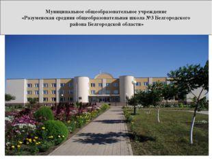 Муниципальное общеобразовательное учреждение «Разуменская средняя общеобразов