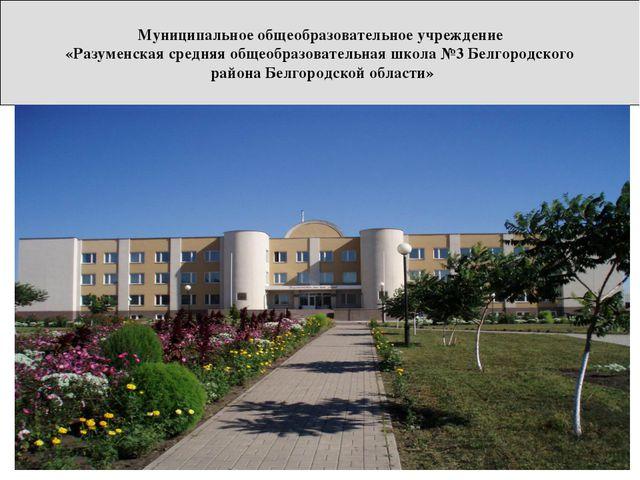 Муниципальное общеобразовательное учреждение «Разуменская средняя общеобразов...