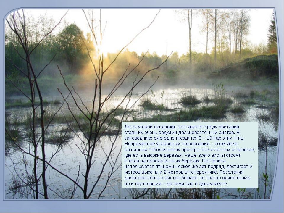 Лесолуговой ландшафт составляет среду обитания ставших очень редкими дальнево...