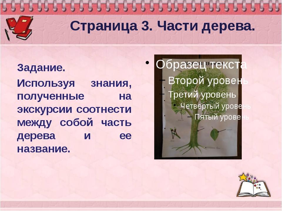 Страница 3. Части дерева. Задание. Используя знания, полученные на экскурсии...