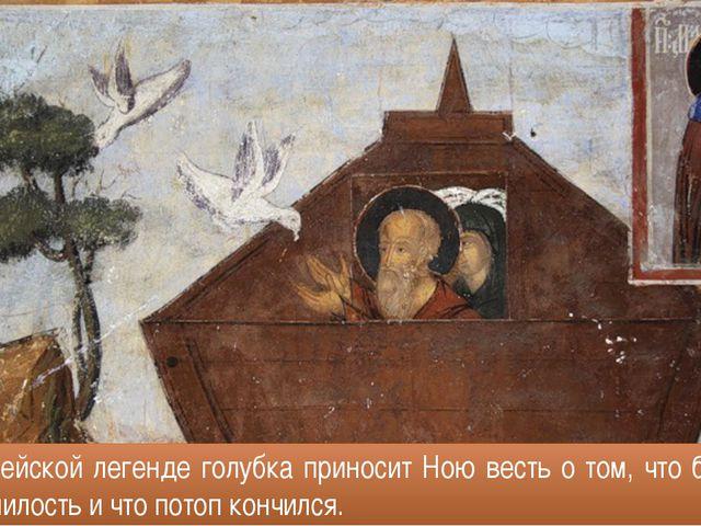 В библейской легенде голубка приносит Ною весть о том, что бог сменил гнев на...
