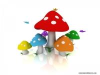 http://f.mypage.ru/fee13cf189321337b7f580424f94af71_02f8a3c59d9f7aed47585c48783a30b7.jpg