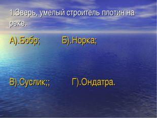 1.Зверь, умелый строитель плотин на реке. А).Бобр; Б).Норка; В).Суслик;; Г).О