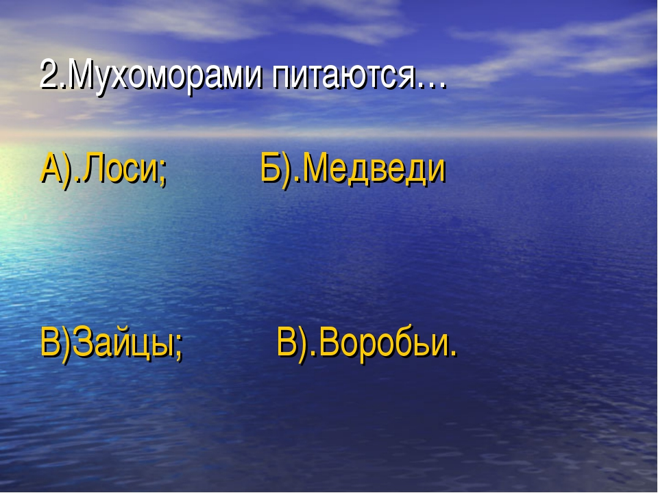 2.Мухоморами питаются… А).Лоси; Б).Медведи В)Зайцы; В).Воробьи.