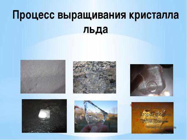 Процесс выращивания кристалла льда