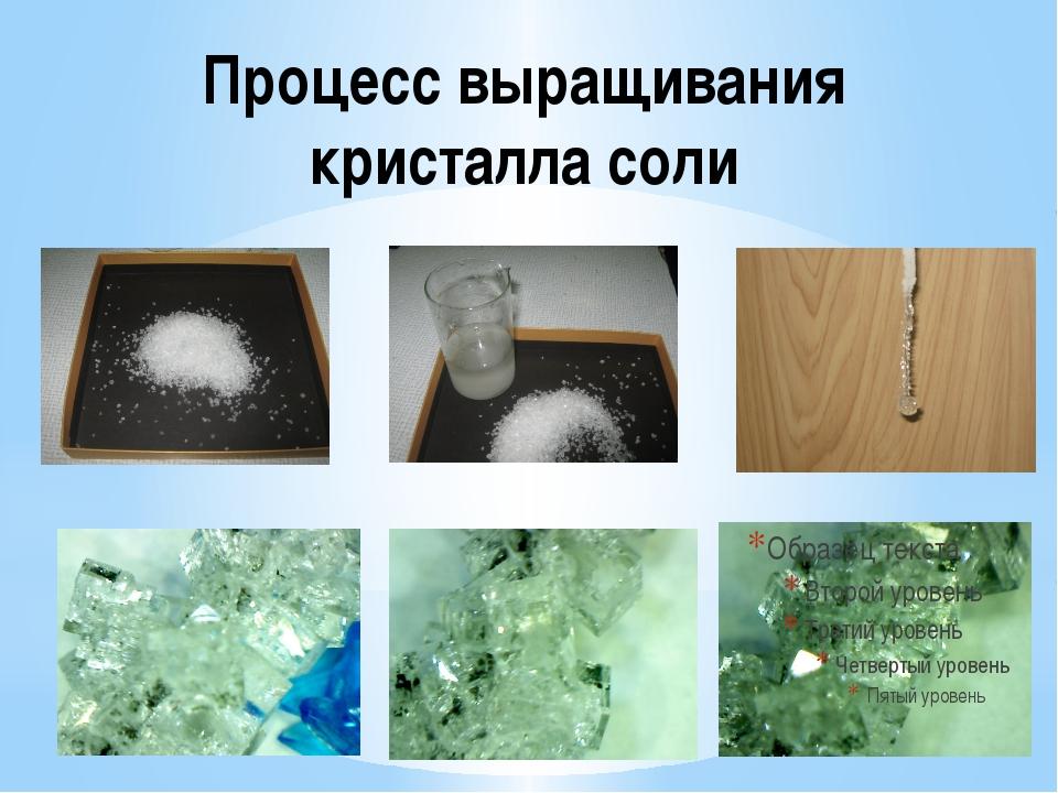 Процесс выращивания кристалла соли
