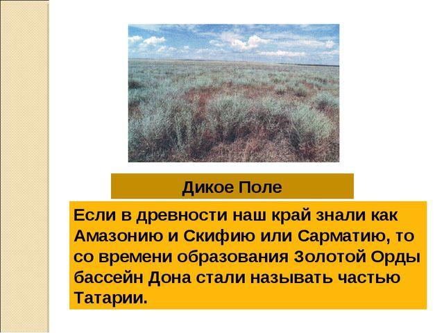 Дикое Поле Если в древности наш край знали как Амазонию и Скифию или Сарматию...