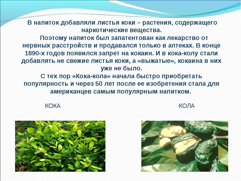 В напиток добавляли листья коки – растения, содержащего наркотические вещес...