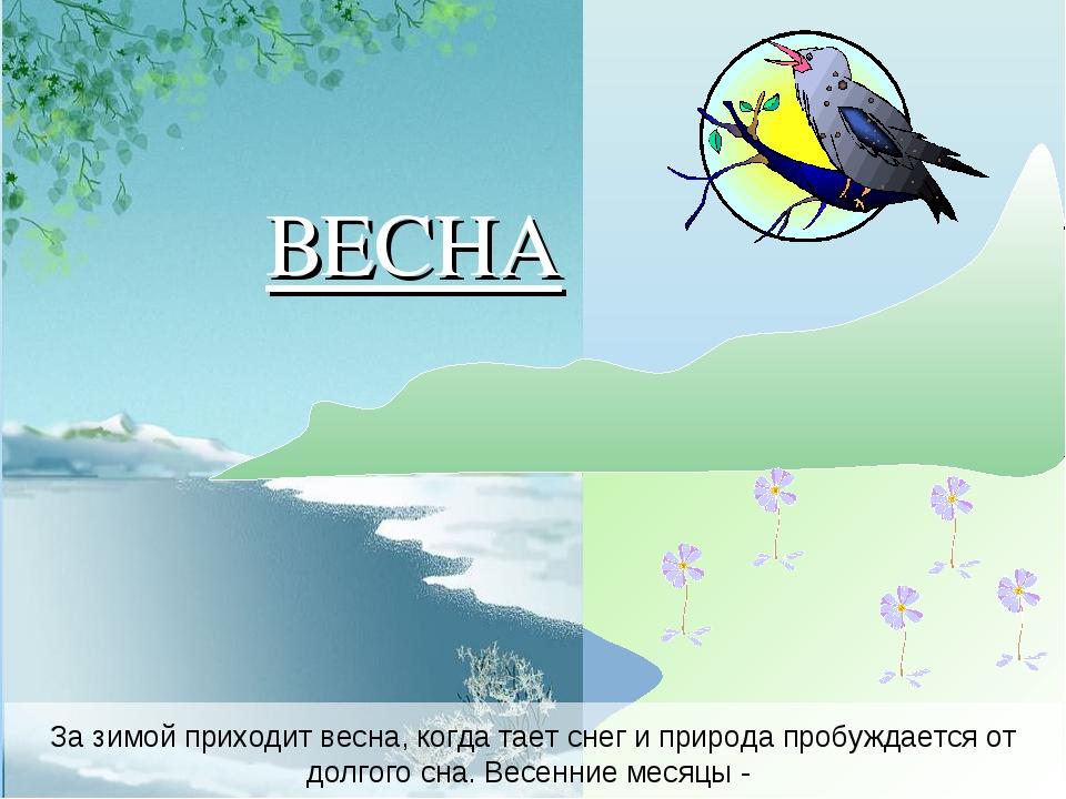 За зимой приходит весна, когда тает снег и природа пробуждается от долгого сн...