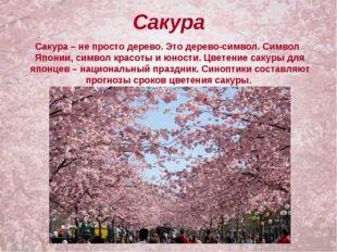 Сакура Сакура – не просто дерево. Это дерево-символ. Символ Японии, символ кр