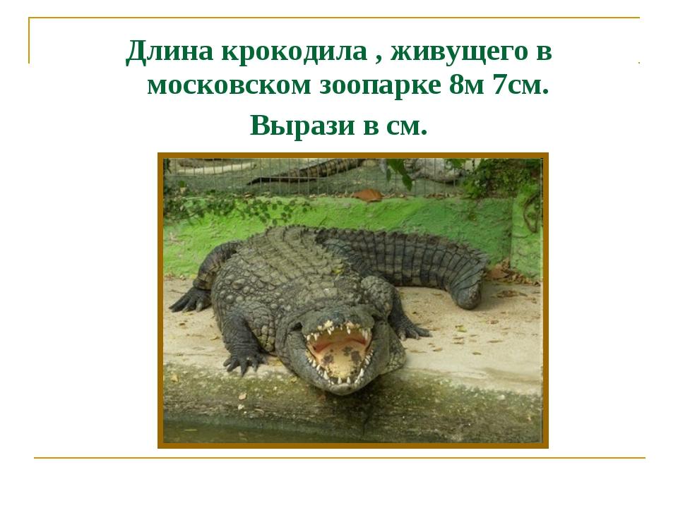 Длина крокодила , живущего в московском зоопарке 8м 7см. Вырази в см.