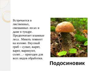 Игра «Угадайка» Встречается в лиственных, смешанных лесах и даже в тундре. Пр