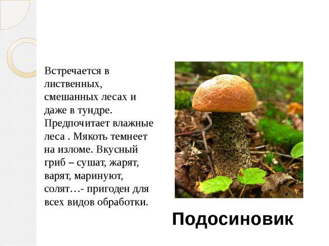 Игра «Угадайка» Встречается в лиственных, смешанных лесах и даже в тундре. Пр...
