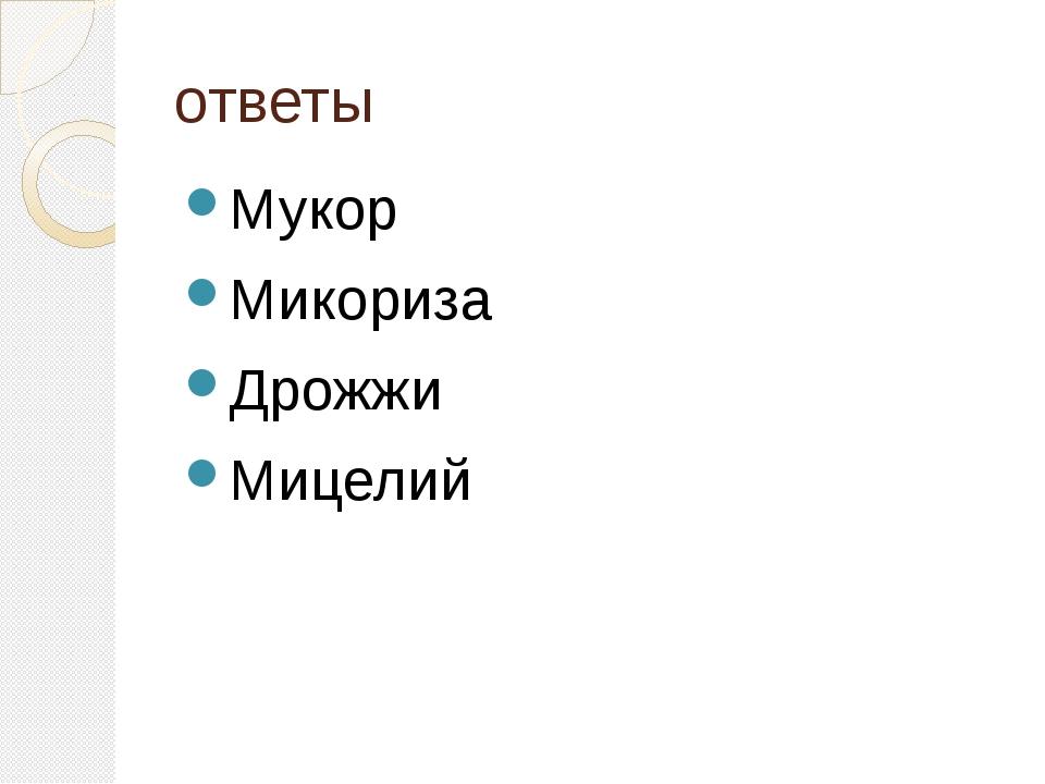 ответы Мукор Микориза Дрожжи Мицелий