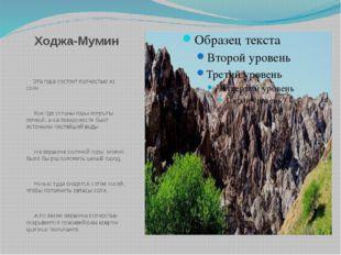 Ходжа-Мумин Эта гора состоит полностью из соли. Кое-где склоны горы покрыты п