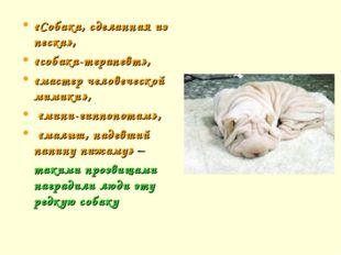 «Собака, сделанная из песка», «собака-терапевт», «мастер человеческой мимики»