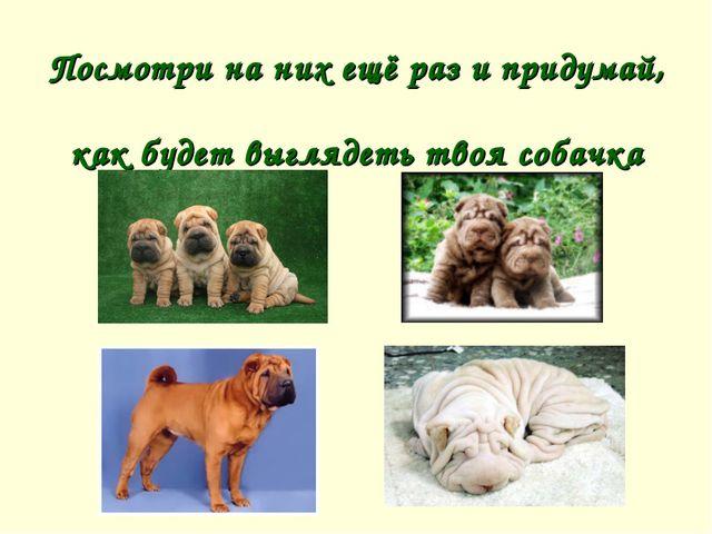 Посмотри на них ещё раз и придумай, как будет выглядеть твоя собачка
