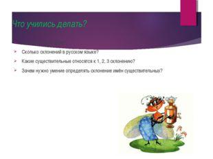 Что учились делать? Что такое склонение? Сколько склонений в русском языке? К